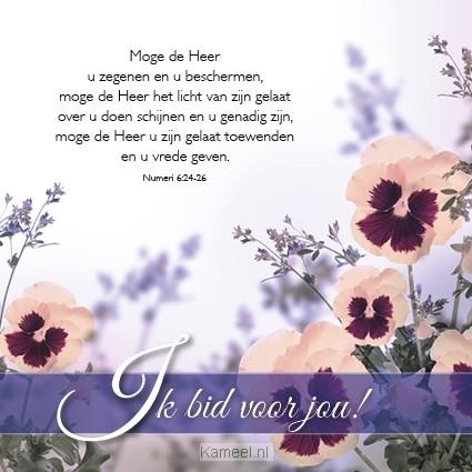 hartelijk gefeliciteerd kaart Kaart hartelijk gefeliciteerd | Blessings | Kaarten | Kameel.nl hartelijk gefeliciteerd kaart
