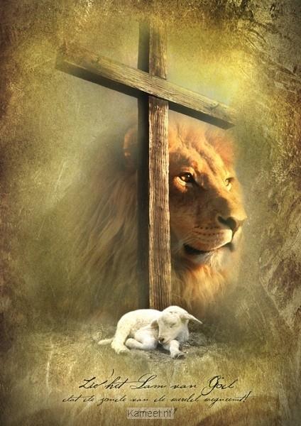 poster a3 kruis leeuw en lam s 246 rensen david cadeaus