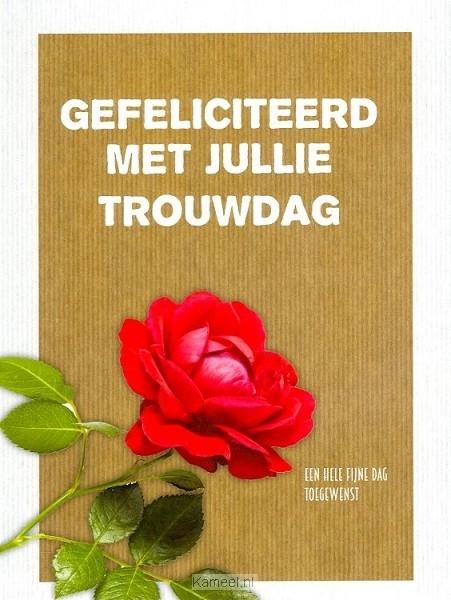 kaart gefeliciteerd met jullie trouwdag | leef! | kaarten | kameel.nl