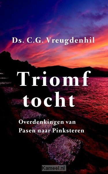 Grote afbeelding Triomftocht